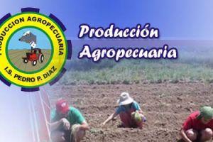 Carrera Profesional de Producción Agropecuaria